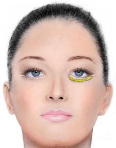 alt göz kapağı anatomisi